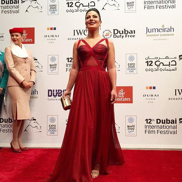 مهرجان دبي السينمائي الدولي (12)