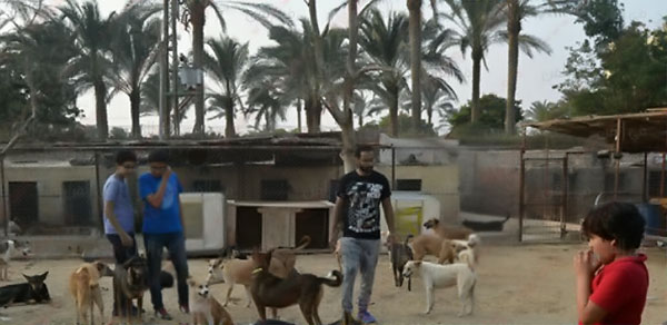 احمد فهمي ومنة حسين فهمي